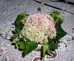 Letné kvetinové aranžmány